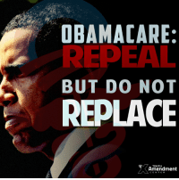 "Memes, Constitution, and Obama Care: OBAMA CARE:  REPEAL  BUT DO NOT  REPLACE  Amendment  CENTER ""Repeal and replace?""  Hell no.  Repeal and nothing.  That's the only thing that fits with the #constitution"