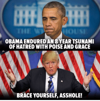 SHARE IF YOU'RE READY TO FIGHT TRUMP!   h/t: The Other 98%   A good way to start the fight? Tell Trump to delete his Twitter: http://bit.ly/2iedKJw: OBAMA ENDURED AN 8 YEARTSUNAMI  OF HATRED WITH POISE AND GRACE  BRACE YOURSELF ASSHOLE! SHARE IF YOU'RE READY TO FIGHT TRUMP!   h/t: The Other 98%   A good way to start the fight? Tell Trump to delete his Twitter: http://bit.ly/2iedKJw