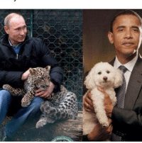 Memes, 🤖, and Pet: OBAMA I LOVE YOU MAN BUT YOU NEED TO GET ON PUTIN'S PET LEVEL COME THE FUCK ON (theprogressiveinfluece.com)