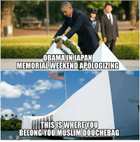 FWD: Absolutely NO respect for America!!!: OBAMA IN JAPAN  MEMORIAL WEEKEND  APOLOGIZING  THIS IS WHERE YOU  MUSLIM DOUCHEBAG FWD: Absolutely NO respect for America!!!