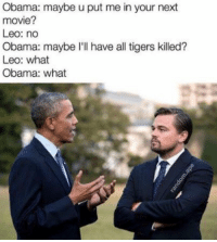 Obama: maybe u put me in your next  movie?  Leo: no  Obama: maybe I'll have all tigers killed?  Leo: what  Obama: what