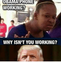 Memes, 🤖, and Usa: OBAMA PHONE  WORKING?  N  WHY ISNIT YOU WORKING? Hahaha . . . Conservative America SupportOurTroops American Gun Constitution Politics TrumpTrain President Jobs Capitalism Military MikePence TeaParty Republican Mattis TrumpPence Guns AmericaFirst USA Political DonaldTrump Freedom Liberty Veteran Patriot Prolife Government PresidentTrump Partners @conservative_panda @reasonoveremotion @conservative.american @too_savage_for_democrats -------------------- Contact me ●Email- RaisedRightAlwaysRight@gmail.com ●KIK- @Raised_Right_ ●Send me letters! Raised Right, 5753 Hwy 85 North, 2486 Crestview, Fl 32536