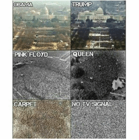 Carpet 👌😤: OBAMA  PINK FLOYD  CARPET  TRUMP  QUEEN  NO TIV SIGNAL Carpet 👌😤
