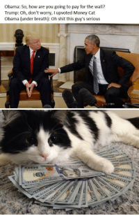 Better UPVOTE: Obama: So, how are you going to pay for the wall?  Trump: Oh, don't worry, l upvoted Money Cat  Obama (under breath): Oh shit this guy's serious   go  ク Better UPVOTE
