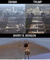 Obama, Trump, and Dank Memes: OBAMA  TRUMP  BARRY B. BENSON