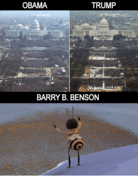 Obama, Trump, and Barry: OBAMA  TRUMP  BARRY B. BENSON https://t.co/SgYaTBXVRO