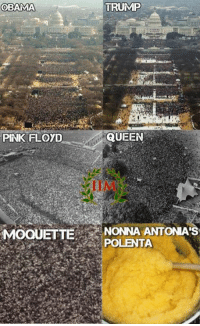 Memes, Pink Floyd, and 🤖: OBAMA  TRUMP  QUEEN  PINK FLOYD  OQUETTE  NONNA ANTONIA'S  POLENTAA -REBUS