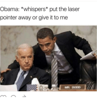 Clique, Memes, and Avengers: Obama: *whispers put the laser  pointer away or give it to me  MR DODD DON'T JOE marvel fandom textpost funnypost tumblr clean doctorwho hungergames mockingjay text jeremyrenner hawkeye avengers tumblrpost meme tumblr bandom patd panicatthedisco brendonurie clean funny funnypost music bands falloutboy clique top twentyonepilots memes joshdun tylerjoesph