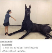 The Continental: obbits-and-destiel.  kel  that is not a dog that is the continent of australia  Clifford went through a goth phase