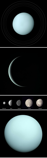 Ariel, Gif, and Nasa: OBERON  TITANIA  UMBRIEL  MIRANDA  ARIEL astronomyblog:  The discovery of UranusOn this day in 1781 was discovered planet Uranus, by astronomer William Herschel.    Uranus is the seventh planet of the Solar System; it has 27 known moons, all of which are named after characters from the works of William Shakespeare and Alexander Pope. William Herschel announced its discovery on March 13, 1781, expanding the known boundaries of the Solar System for the first time in history and making Uranus the first planet discovered with a telescope.      NASA's Voyager 2 spacecraft flew closely past distant Uranus, the seventh planet from the Sun, in January 1986. Voyager 2 radioed thousands of images and voluminous amounts of other scientific data on the planet, its moons, rings, atmosphere, interior and the magnetic environment surrounding Uranus.  Credit: NASA / JPL / Voyager