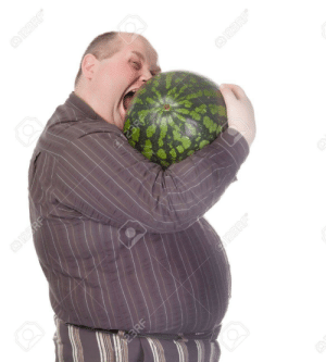 Obese man with huge belly attempting to bite into a watermelon as his insatiable appetite gets the better of him before he can cut it: Obese man with huge belly attempting to bite into a watermelon as his insatiable appetite gets the better of him before he can cut it