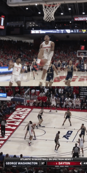 Obi Toppin put on a dunk exhibition!  👀 Watch the bench during the Between the legs dunk    https://t.co/e8KG44QZFz: Obi Toppin put on a dunk exhibition!  👀 Watch the bench during the Between the legs dunk    https://t.co/e8KG44QZFz