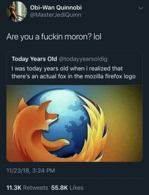 Dank, Head, and Lol: Obi-Wan Quinnobi  @MasterJediQuinn  Are you a fuckin moron? lol  Today Years Old @todayyearsoldig  I was today years old when i realized that  there's an actual fox in the mozilla firefox logo  11/23/18, 3:24 PM  11.3K Retweets 55.8K Likes On his head by HungryHomeless MORE MEMES