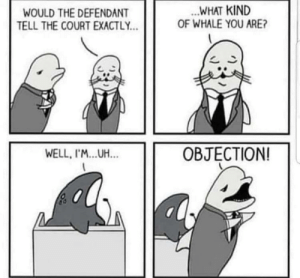 Objection: Objection