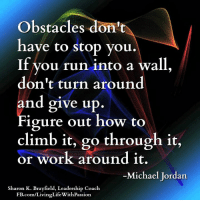 Life, Memes, and Michael Jordan: Obstacles don't  have to stop you  If you run into a wall,  don't turn around  and give up.  igure out how to  climb it, go through it,  or work around it.  -Michael Jordan  Sharon K. Brayfield, Leadership Coach  FB.com/LivingLife WithPassion Sharon K. Brayfield, Professional Life Coach & Mentor