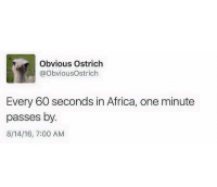 Pray for africa🙏🏼😢😭😂😂 follow me @hoodankery_memes for more!👍🏼: Obvious Ostrich  @Obvious Ostrich  Every 60 seconds in Africa, one minute  passes by.  8/14/16, 7:00 AM Pray for africa🙏🏼😢😭😂😂 follow me @hoodankery_memes for more!👍🏼