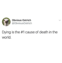 Facts: Obvious Ostrich  @ObviousOstrich  Dying is the #1 cause of death in the  world. Facts