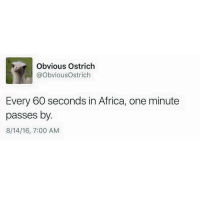 Spread awareness: Obvious Ostrich  @ObviousOstrich  Every 60 seconds in Africa, one minute  passes by.  8/14/16, 7:00 AM Spread awareness