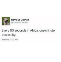 Wtf lmao Follow me @nochillhumor: Obvious Ostrich  @ObviousOstrich  Every 60 seconds in Africa, one minute  passes by.  8/14/16, 7:00 AM Wtf lmao Follow me @nochillhumor