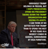 Ikea, Memes, and True: OBVIOUSLY TRUMP  BELONGS IN PRISON, BUT  I HOPE PROSECUTORS  SPEND HIS PRESIDENCY  TAKING DOWN THE TRUMP  ORGANIZATION AND  SEIZING ITS ASSETS.  CAN THINK OF NO  BETTER FATE FOR TRUMP  THAN TO SPEND THE REST  OF HIS YEARS IN A  MODEST CONDO IN  QUEENS, SURROUNDED  BY IKEA FURNITURE.  @imillhiser  act.tv That would be true justice.