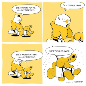 [OC] Guide dogs: [OC] Guide dogs