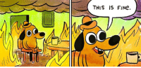 america right now ElectionNight: OC  THIS IS FINe. america right now ElectionNight