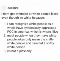 America, Memes, and White People: ocelhira  i dont get offended at white people jokes  even though im white because:  1. i can recognize white people as a  whole have systemically oppressed  POC in america, which is where i live  2. most people when they make white  people jokes only mean the shitty  white people and i am not a shitty  white person  3. im not a pissbaby @ half of the people who comment