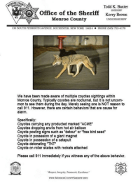 """Local Sheriffs Dept. posted this.: OCHERIFFL  Todd K. Baxter  SHERIFF  office of the Sherifforey Brown  NY  Monroe County  UNDERSHERIFF  130 SOUTH PLYMOUTİ AVENUE. ROCHESTER, NEw YORK  146 14  . PHONE (585) 753-4178  We have been made aware of multiple coyotes sightings within  Monroe County. Typically coyotes are nocturnal, but it is not uncom-  mon to see them during the day. Merely seeing one is NOT reason to  call 911. However, there are certain behaviors that are cause for  alarm.  Specifically:  Coyotes carrying any producted marked """"ACME""""  Coyotes dropping anvils from hot air balloon  Coyote posting signs such as """"detour"""" or """"free bird seed""""  Coyote in possesion of a giant magnet  Coyote in possession of a catapult  Coyote detonating """"TNT  Coyote on roller skates with rockets attached  Please call 911 immediately if you witness any of the above behavior.  Respect ntegriny, Teumwork Excelence  www.MoONROECOUNTYSHERIFF INFO Local Sheriffs Dept. posted this."""