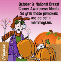 Dank, Shopping, and Breast Cancer: October is National Breast  Cancer Awareness Month.  So grab those pumpkins  and go get a  mammogram. We're having a giveaway at The Breast Cancer Site! Enter to WIN a $500 shopping spree! >>>http://po.st/TleQ9e