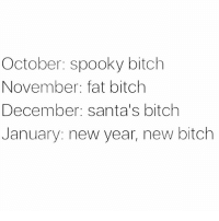 Bitch, Memes, and New Year's: October: spooky bitch  November: fat bitch  December: santa's bitch  January: new year, new bitch Most likely I'll just be the same old bitch tho 🤷🏼‍♀️🙋🏽‍♀️