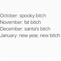 Bitch, New Year's, and Fat: October: spooky bitch  November: fat bitch  December: santa's bitch  January: new year, new bitch