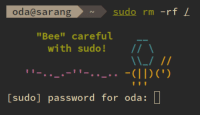 "oda@sarang  oda@sarangsudo rm -rf L  sudo rm -rf  ""Bee"" careful  with sudo! II  [sudo] password for oda: D bee💻irl"