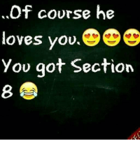 Section 8, Got, and You: Of course he  loves you.  Yov got Section  8