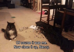 Clean It Up: Of course it was me.  Now clean it up, Nancy,