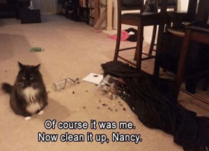 Clean It Up: Of course it was me.  NOW Clean it up,  Now clean it up, Nancy,