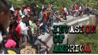 America, Facebook, and Memes: OF  The  Big Sarge Show IMMIGRATION NIGHTMARE ON OUR BORDERS!  Join us over at www.facebook.com/RedConOneMedia   4000 plus people are headed to the American border. Is this an invasion? Are these drug dealers, gang members, terrorists, or just displaced people?  Can the President deploy troops to the border Constitutionally? Will Congress support these actions? Will AMERICA support these actions? All this TONITE AT 9 PM EST ON The Big Sarge Show.  HELP KEEP US ON AIR BY SUPPORTING US AT:  streamlabs.com/RobertBrandt www.paypal.me/BigSarge101  EVERY DOLLAR COUNTS!!!  Also visit us at www.youtube.com/RedConOneMedia and watch us in the comfort of your own home.  THIS IS ONE SHOW YOURE NOT GOING TO WANT TO MISS.  #America #Politics #Invasion #ImmigrationReform #Illegal #Constitution #InsurrectionAct