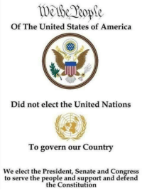 America's Freedom Fighters: Of The United States of America  Did not elect the United Nations  To govern our Country  We elect the President, Senate and Congress  to serve the people and support and defend  the Constitution America's Freedom Fighters