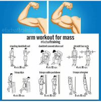 Books, Click, and Lean: ofactsoftraining  arm workout for mass  ofactsoftraining  standing dumbbell curl  dumbbell concentration curl  straight bar curls  4 sets, 10 reps  4 sets 12 reps  4 sets 10 reps  triceps cable pushdown  tricep dips  triceps cxtension  5 sets 15 reps  4 sets 10 reps  5 sets 15 reps 💪💪LET'S PUMP THEM UP THIS SUMMER! _ @factsoftraining _ 🌍💻 Herculesworkouts© Online Personal Coaching! 🏋🍽 - The 12 Week Fitness & Meal Programs are the ultimate guide to achieving your goal physique, no shortcuts, no bullsh!t, just real natural results! _____ What's Included: 🔹Personalized programs based on your filled out questionnaire. 🔹Fitness: An overvieuw of how manipulating rep ranges throughout the week, the best ways to build muscle mass and strength, suitable for man and women, based on your training frequency and much more! 🔹Nutrition: how many calories and macronutrients you need per day, how to enjoy foods you love and still get in shape, based on your budget and possibility to mealprep and much more! 🔹The science behind gaining lean muscle mass and losing body-fat written down in our E-books which are added to your program! 🔹Unlimited personal contact during your process, unique extra tips and information, evaluation and tips! 🔹Available for men and women! - Wake up the Hercules in you! Go visit at herculesworkouts.com or click the link in the bio of our page: 👉 @herculesworkouts 👈 👉 @herculesworkouts 👈 👉 @herculesworkouts 👈 👉🏻 @shredded_hercules 👈🏻 👉🏻 @shredded_hercules 👈🏻 👉🏻 @shredded_hercules 👈🏻 ____