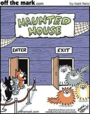 Spoopy Cats: off the mark.conm  by Mark Parisi  MAUNTE  HOUSE  ENTER  EXIT  otfthemark.com  MarkParisi @aol com P0-ゆ Spoopy Cats