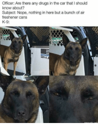 A couple cop memes before you drive drunk tonight: Officer: Are there any drugs in the car that I should  know about?  Subject: Nope, nothing in here but a bunch of air  freshener cans  K-9 A couple cop memes before you drive drunk tonight