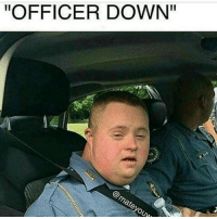 """Memes, 🤖, and  Matey: """"OFFICER DOWN""""  @matey ouww Not dank enough"""