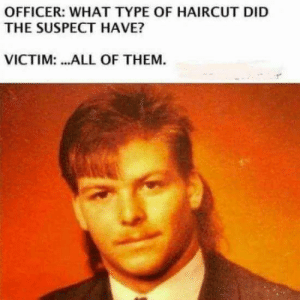 Haircut, Wack, and Did: OFFICER: WHAT TYPE OF HAIRCUT DID  THE SUSPECT HAVE?  VICTIM: ...ALL OF THEM. Sooooo wack
