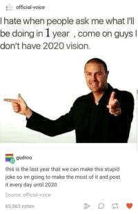 Vision, Voice, and Ask: official-voice  Ihate when people ask me what Ill  be doing in 1 year, come on guys I  don't have 2020 vision.  gudroo  this is the last year that we can make this stupid  joke so im going to make the most of it and post  it every day until 2020  Source: official-voice  65,563 notes 2020