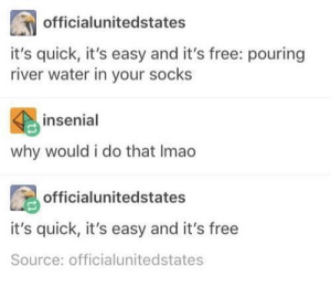 Dank, Memes, and Target: officialunitedstates  it's quick, it's easy and it's free: pouring  river water in your socks  insenial  why would i do that Imao  officialunitedstates  it's quick, it's easy and it's free  Source: officialunitedstates I'm sold by Fishoyo MORE MEMES