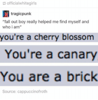 """fall out boys: officialwhitegirls  tragicpunk  """"fall out boy really helped me find myself and  who i am  you're a cherry blossom  You're a canary  You are a brick  Source: cappuccinofroth"""