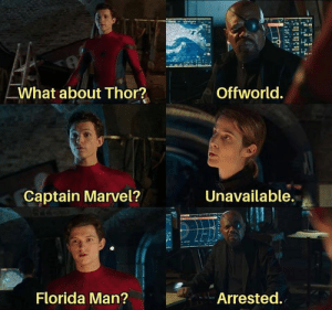 Dank, Florida Man, and Florida: Offworld.  What about Thor?  Unavailable.  Captain Marvel?  Florida Man?  Arrested. The hero we need.