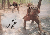 """The Joes are happy? We can't have that, now can we?"": Oficers  NCOs ""The Joes are happy? We can't have that, now can we?"""