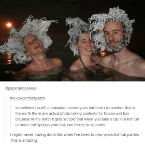 20+ Funny Tumblr Posts That Will Take You To Fun Tumblr-Land (Episode #219): ofpaperandponies:  the-cu-cumberpatch:  sometimes i scoff at canadian stereotypes but then i remember that in  the north there are actual photo-taking contests for frozen wet hair  because in the north it gets so cold that when you take a dip in a hot tub  or some hot springs your hair can freeze in seconds  I regret never having done this when I've been to new years hot tub parties.  This is amazing 20+ Funny Tumblr Posts That Will Take You To Fun Tumblr-Land (Episode #219)