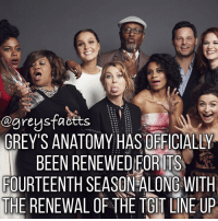 Memes, Scandal, and 🤖: ogreysfactts  o o o  o  to O o  o o GREY'S ANATOMY HASOFFICIALLY  BEEN RENEWED FORITS  FOURTEENTH SEASONALONG WITH  THE RENEWAL OF THE TGIT LINE UP Double Tap for Season 14! 💃🏻🍷 + Fact: Grey's Anatomy has officially been renewed for its fourteenth season along with the renewal of the tgit line up (Grey's Anatomy S14, Scandal S7 and How to get away with Murder S4) 💃🏻🍷 + - greysanatomy greys greysfacts greysabc scandal htgawm tgit
