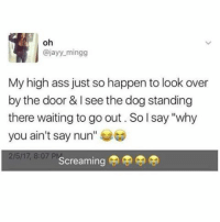 """Ass, Memes, and Waiting...: oh  ajayy mingg  My high ass just so happen to look over  by the door & see the dog standing  there waiting to go out. So l say """"why  you ain't say nun  2/5/17, 8:07 P  Screaming Something I would do while I'm high 😂😂😂😂😂Tag some one who would do this 😂 ( follow @hollywoodrez for more )"""